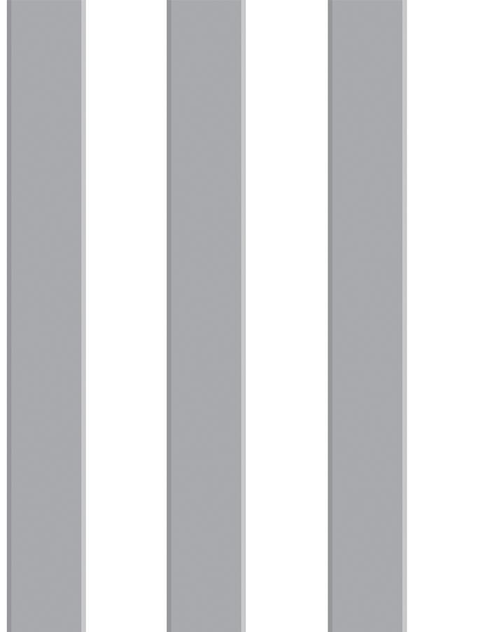 RAYA 3D GRIS - PINT