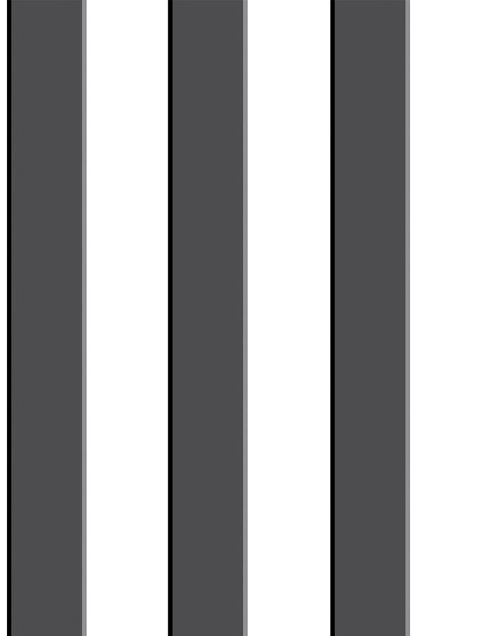RAYA 3D NEGRO - PINT